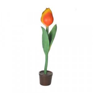 Oversized Tulip