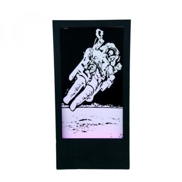 Panel – Astronaut 1