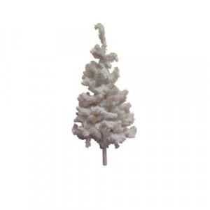 White Xmas Trees