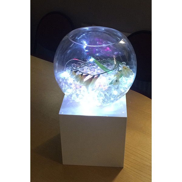 fish-bowl-white-gel-white-light