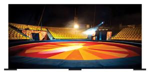 Circus Backdrop