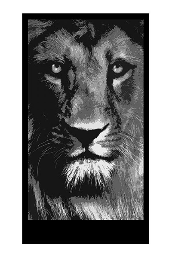 Lion back lit panel