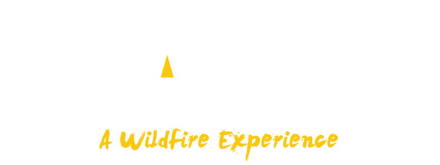 Party Prop Hire by WILDFIRE