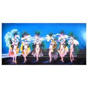 Showgirls-Backdrop-6Mx3M-
